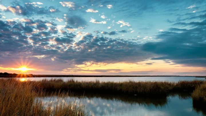 With CO2 Boost, Marshes Can Rise to Meet Flood Risks